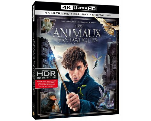 un Blu ray  Les animaux fantastiques