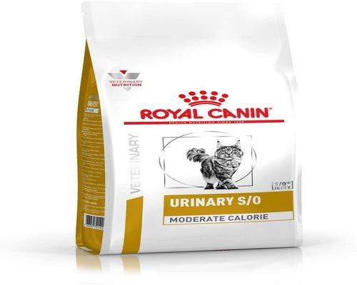 ein Royal Canin Food Pack
