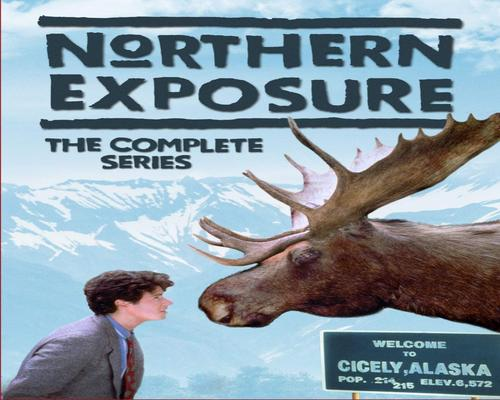 a Movie Northern Exposure: The Complete Series