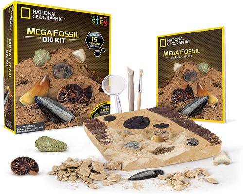 a National Geographic Science Fossil Excavation Kit