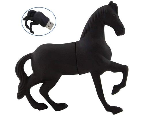 A 32 GB Black Horse USB key