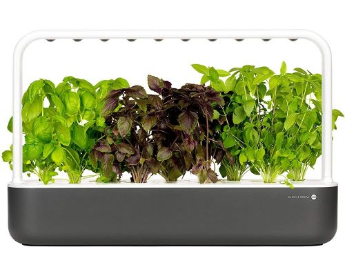 An autonomous indoor vegetable garden